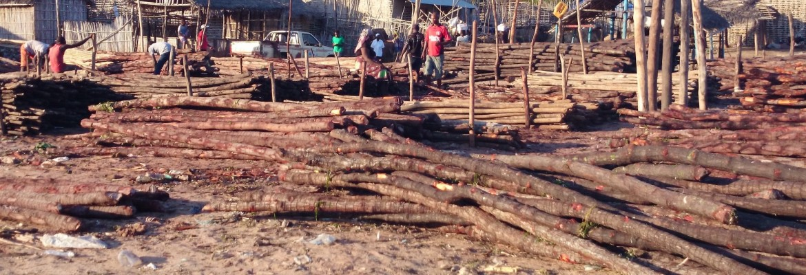 Spaces Sustainable Poverty Alleviation From Coastal